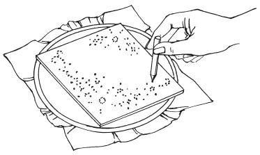 Рис. 5. Перенесение схемы с шаблона на основу