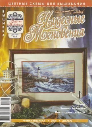 Чудесные мгновения Ручная вышивка №12 2009 год