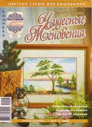 Чудесные мгновения Ручная вышивка №6 2010 год