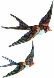 Рисунок для вышивки гладью птицы